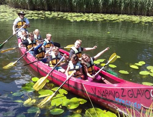 Počitniške aktivnosti v VGC Skupaj v Kočevju